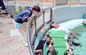 桂浜水族館スタッフイケメン