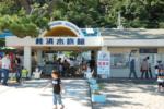 桂浜水族館が話題に!その魅力やスタッフの歩合制についても調査!