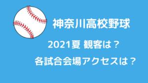神奈川県高校野球2021夏観客は?試合会場までのアクセスは?