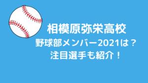 相模原弥栄高校野球部メンバー2021は?公立の星注目選手も紹介!