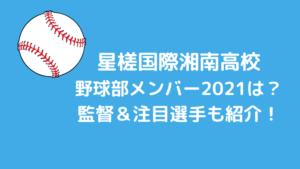 星槎国際湘南高校野球部メンバー2021と出身中学シニアは?監督と注目選手も紹介!